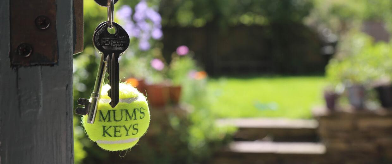 Tennis Ball Accessories