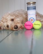Personalised Tennis Balls Tubed
